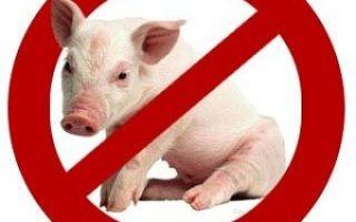 Почему в религии запрещена свинина