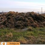 Переработка отходов животноводства: способы, выгода